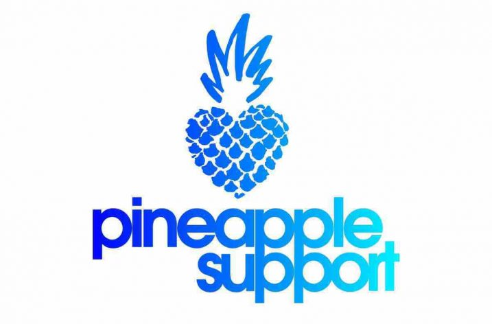 Pineapple Support Offering Free Therapy To Adult Industry