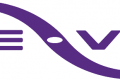 We-Vibe app pulled from Google Play store
