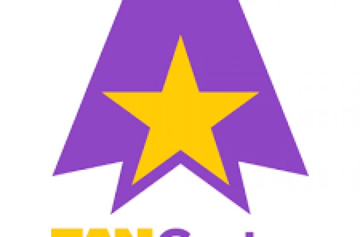 FanCentro Offers DMCA Services